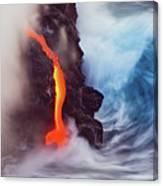 Elements Of Nature Canvas Print
