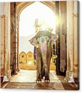 Elephant At Amber Palace Jaipur,india Canvas Print