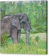 Elephant At Kruger Canvas Print