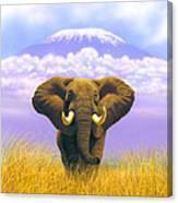 Elephant At Table Mountain Canvas Print