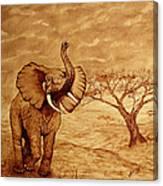 Elephant Majesty Original Coffee Painting Canvas Print