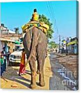 Elephant Ride In Street Canvas Print