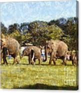 Elephant Train  Canvas Print
