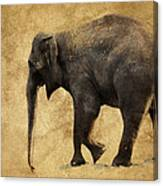Elephant Walk II Canvas Print