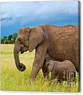 Elephants In Masai Mara Canvas Print