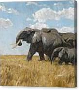 Elephants On The Move Canvas Print
