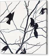 Eleven Birds One Morsel Canvas Print