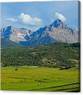 Elk Below Mount Sneffels Canvas Print