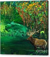 Elk Fall Canvas Print