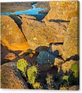 Elk Mountain Sunset Canvas Print