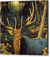 Elk Painting - Autumn Majesty Canvas Print