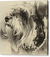 Ella Bella Boo Canvas Print