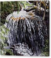 Ellen's Waterfall Canvas Print