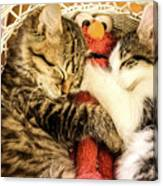 Elmos Nap Time---soft Look Canvas Print