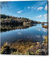 Elsi Reservoir Canvas Print