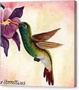 Emerald Beauty  Canvas Print