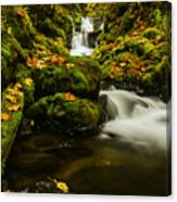 Emerald Falls In Columbia River Gorge Oregon Usa Canvas Print