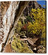 Emerald Falls Zion National Park Canvas Print