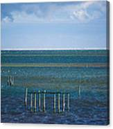Emerald Seas Canvas Print