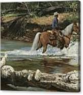 Palomino Crossing Big Creek Canvas Print