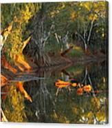 Emu Creek Station 2am-111376 Canvas Print