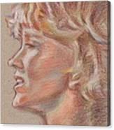 En Firad Skonhet  Canvas Print