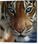 Enchanted Blue Eyes Canvas Print