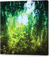 Enchanted Forest 12 Canvas Print