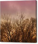 Enchanted Forest 9 Canvas Print
