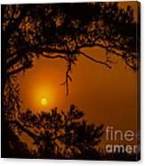 Enchanted Morning Canvas Print