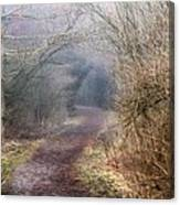 Enchanted Pathway Canvas Print