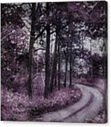 Enchanted Seney Path Canvas Print