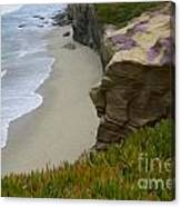 Enchanted Spaces California La Jolla Canvas Print