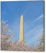 Enchanting Spring In Washington Canvas Print