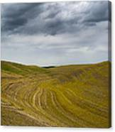 Endless In Color Canvas Print