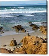 Energizing Seascape At Spanish Bay Canvas Print
