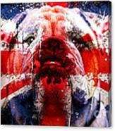 English Bull Dog Canvas Print