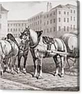 English Farm Horses, 1823 Canvas Print