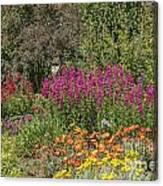 English Garden In Summertime Canvas Print
