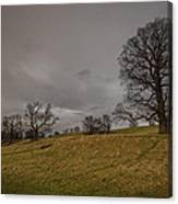 English Pasture Canvas Print