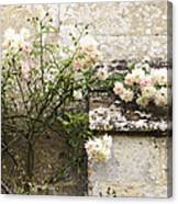 English Roses II Canvas Print