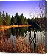 Enjoying The View At Grace Lake Canvas Print