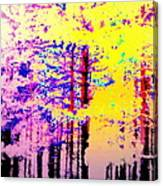 Enlightened Woods Are Here Again Ready To Surprise You  Canvas Print