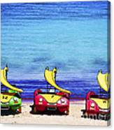 Three's Fun Canvas Print