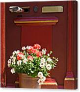Entrance Door With Flowers Canvas Print