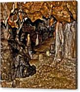 Entrance. Florida Caverns. Canvas Print