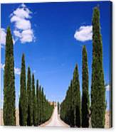 Entrance To Villa Tuscany - Italy Canvas Print