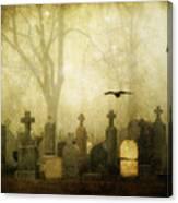 Enveloped By Fog Canvas Print