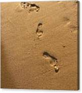 Ephemeral Footprints  Canvas Print
