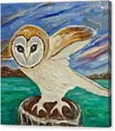 Equinox Owl Canvas Print